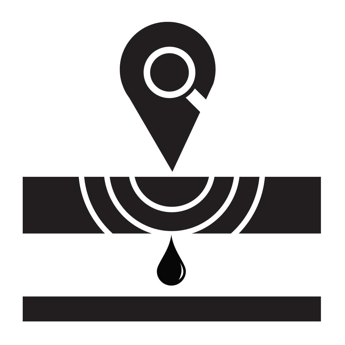 Leak Detection Surveys Icon